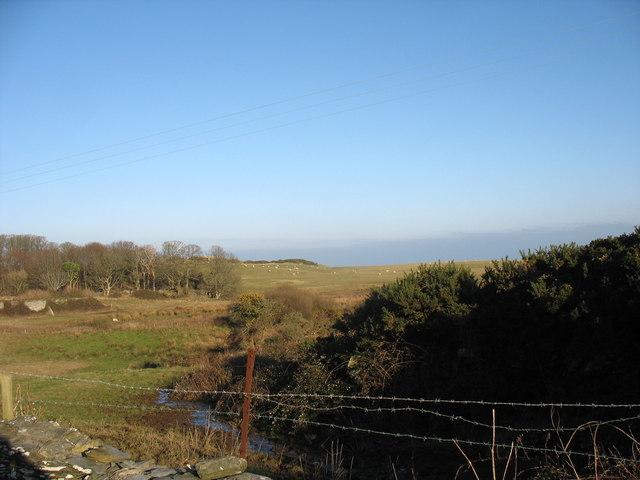 Stream draining into marshland east of the Wylfa Head road