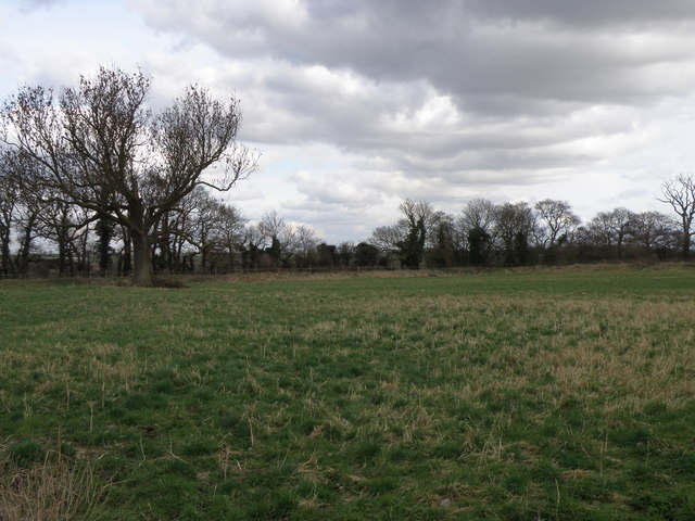 The cricket field at Leighton Bromswold