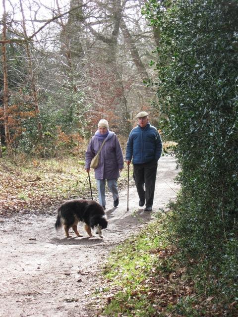 Part of the path that runs round the meadow, Ashridge