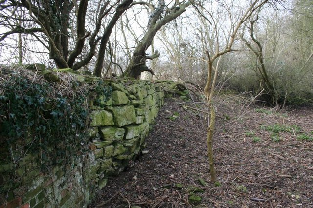 Along the outer wall