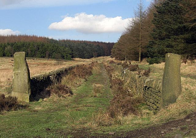 Crompton Moor