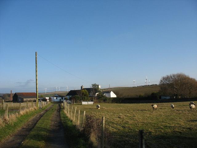 Driveway to Pen y Bryn
