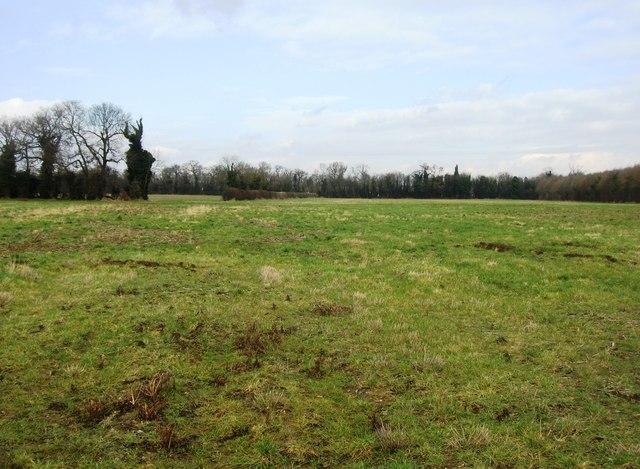 Dull farmland