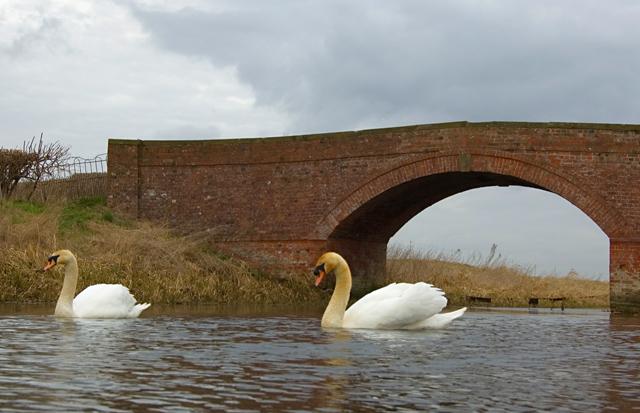 Beverley & Barmston Drain near Arram Grange