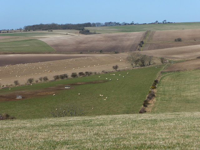 View over Lychpole bottom