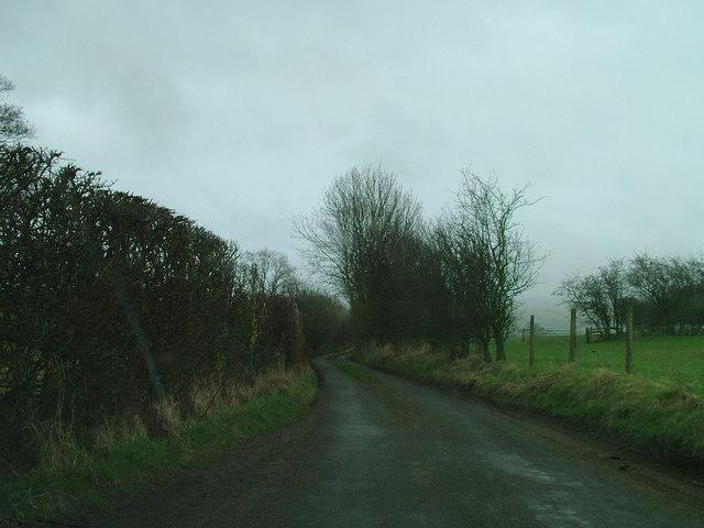 Popping Lane, Kaber