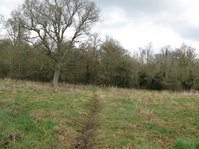 Footpath entering Marringdean Wood from the south