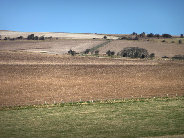 Walkers on the South Downs way