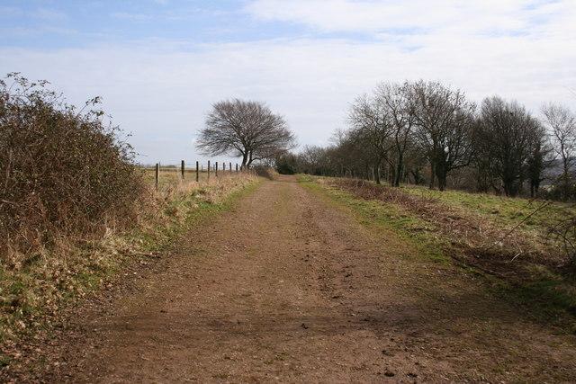 Lyncombe Lane