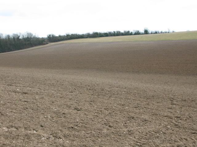 View across farmland towards disused railway line
