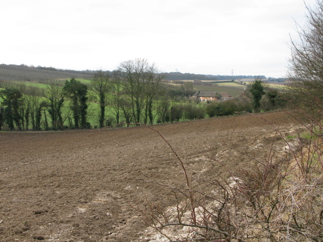Looking towards Pett Farms, Pett Bottom