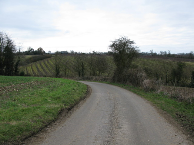 View along the road named Gogway