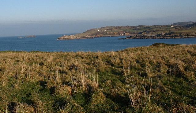 Rough grazing on cliff top near Trwyn y Penrhyn
