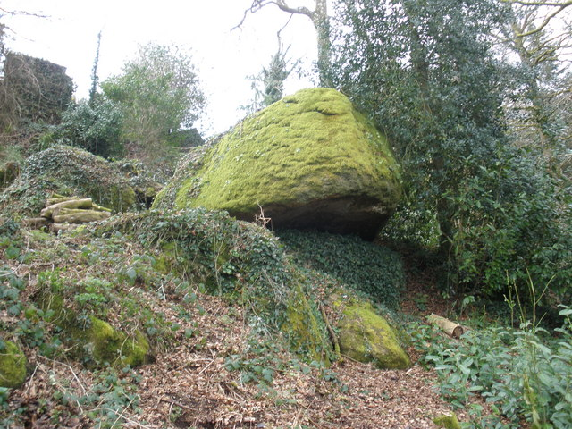 Moss-covered boulder, near Lustleigh