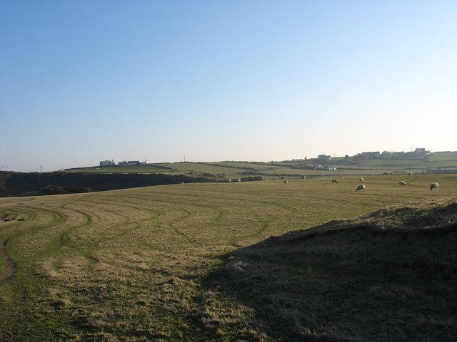 Grazings west of Porth yr Wylfa