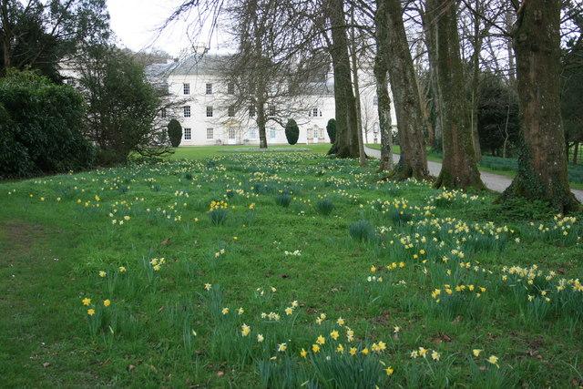 The garden at Saltram