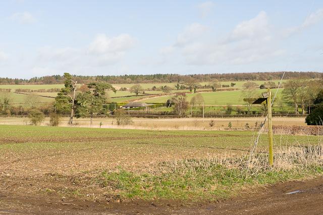 Fields west of Church Lane, Bramdean