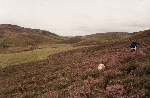 Half-way between Lair, Glen Shee, and Kirkmichael