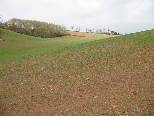 Hillside North of Chapel Farm