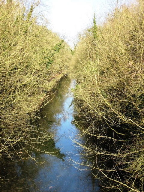 Grand Union Canal – Tring Summit Cutting