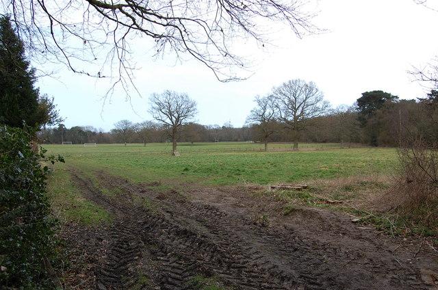 Playing fields near Claremont School