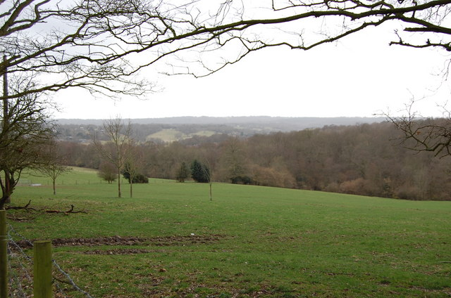 Looking towards Sedlescombe from Hurst Lane