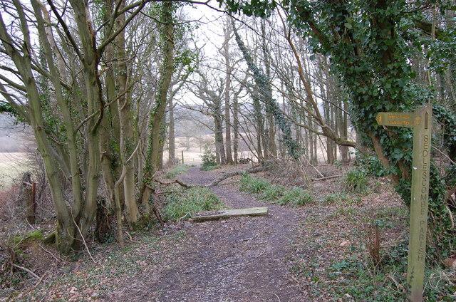 Footpath off Hurst Lane