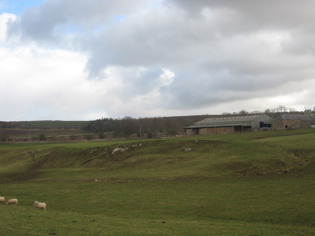 Rough grazing  lands at Blakelaw Farm