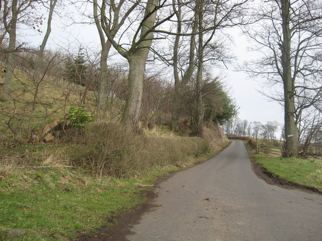 Road to Venchen Farm