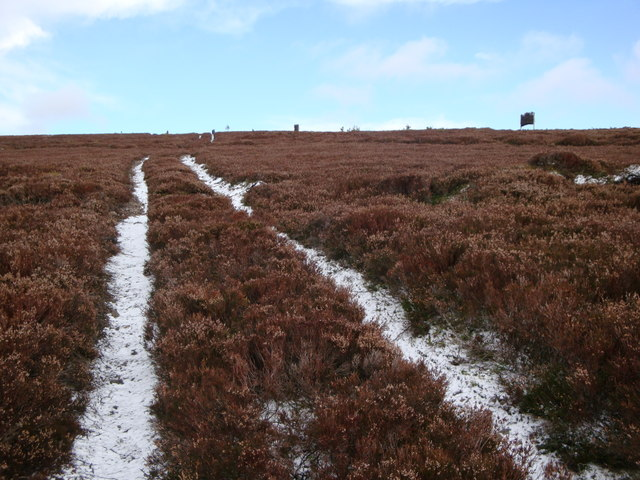 Grouse Butts and track on Craiglea Hill