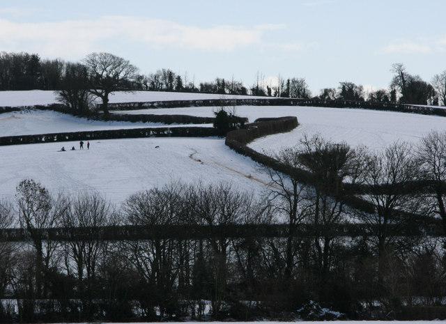 Cotlake Hill, Taunton