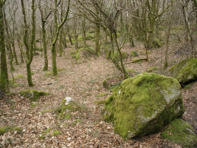 Boulders, near Lustleigh Cleave