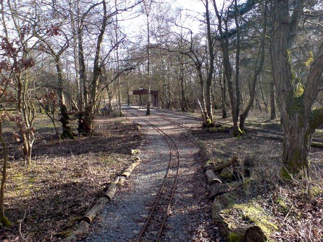 Echill's Wood Railway