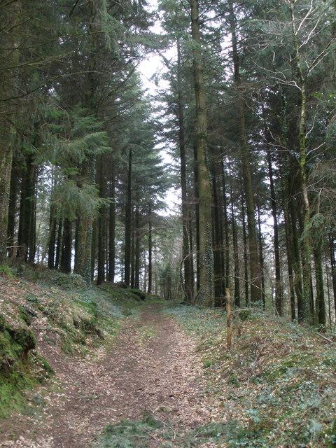 Path to Horsham