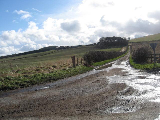 Road to Kypie Farm
