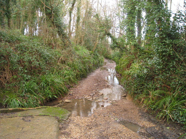 Stream Lane