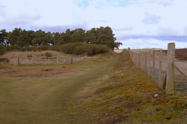 View of footpath leading from Whitehills, Forfar to Lunanhead