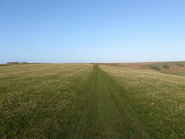 Annington Hill
