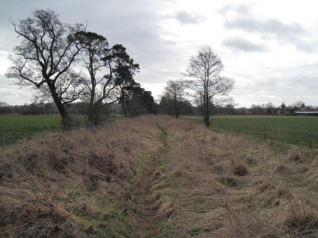 Byway to Moorhead Farm