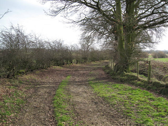 View of Bridleway near Chads Farm