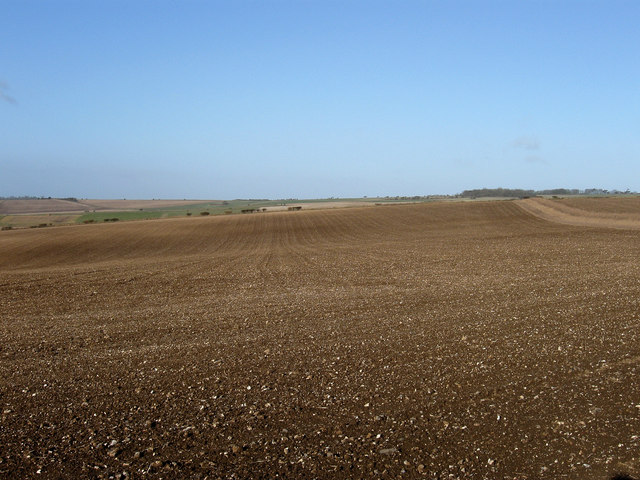 Ploughed Field next to Bostal Road