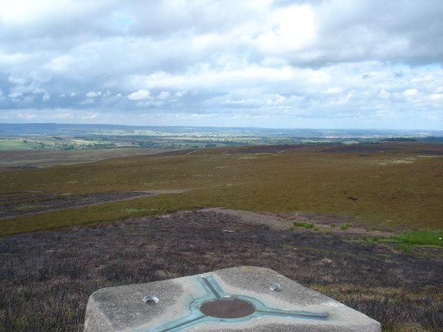 Gilmonby Moor