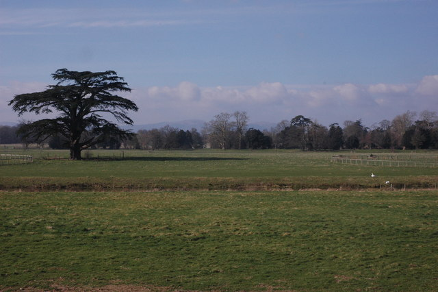 Croome Park viewed from within the Court