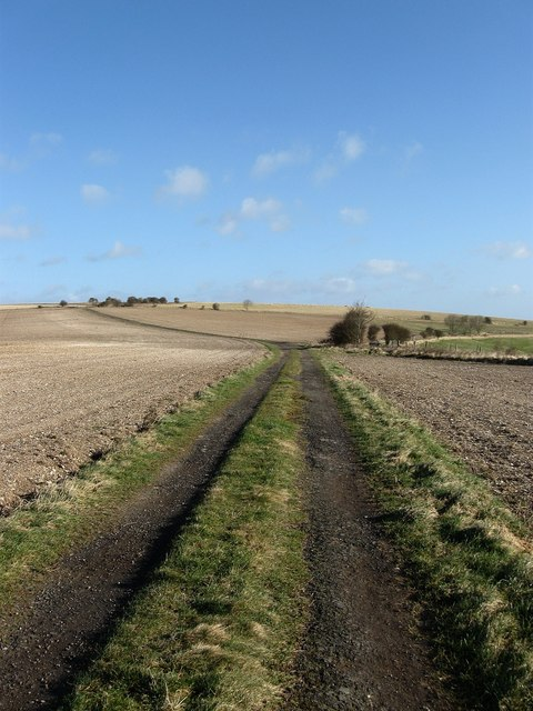 Bridleways Galore