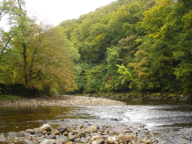 Bend in the River Swale