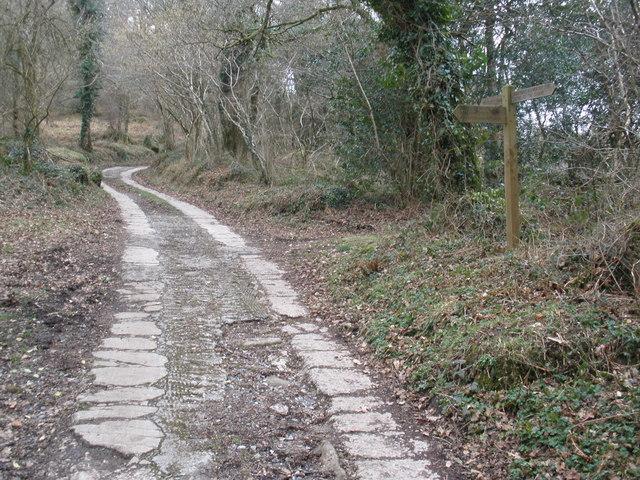 Bridleway to Neadon