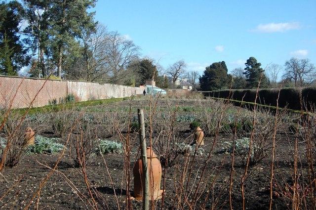 Vegetable Garden, Down House