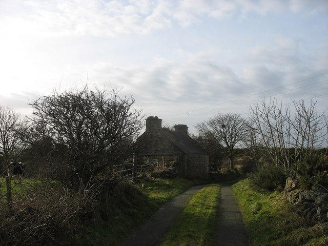 Pen-y-mynydd - a derelict cottage
