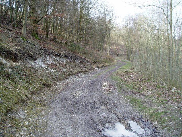Muddy track in South Wood