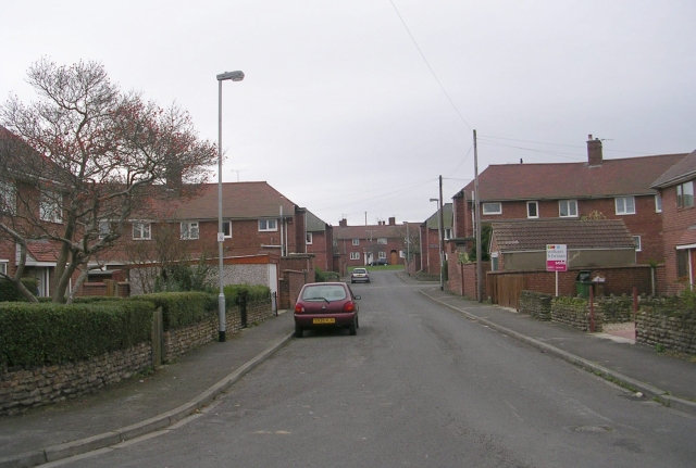 Tarn Road - Little Lane